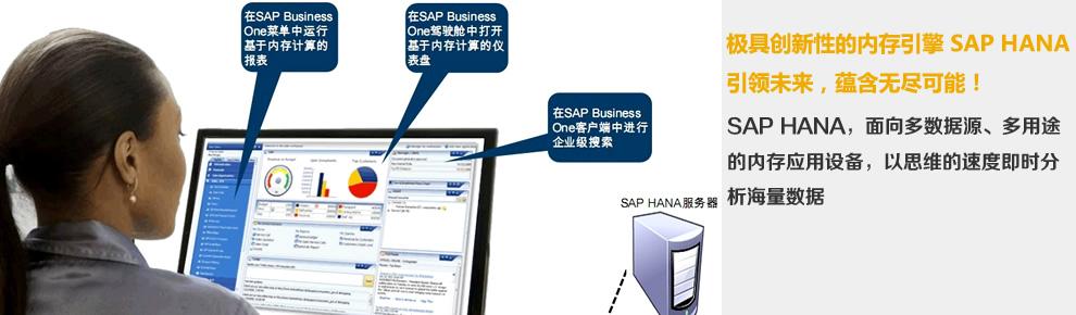 同享SAP